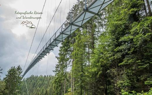 Wildline - Hängebrücke