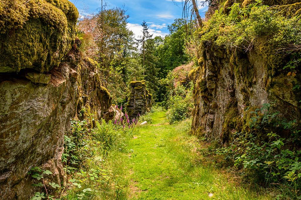 Rockenburger Urwaldpfad - Steinernes Tor