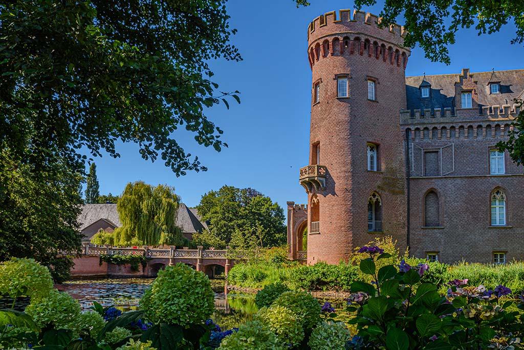 Hortensien und Schloss