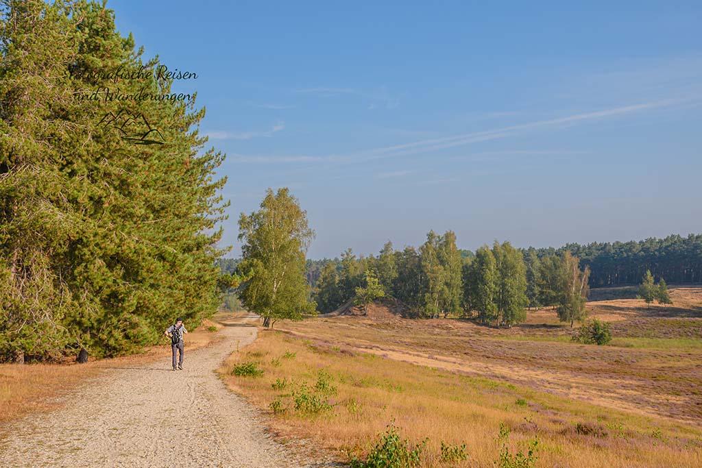 Teverener Heide
