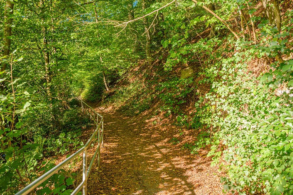 Bergischer Streifzug Höhlenweg