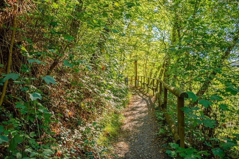 Bergischer Streifzug Höhlenweg an der Agger