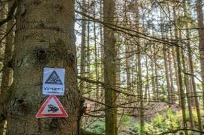 Warnschilder Amphibien
