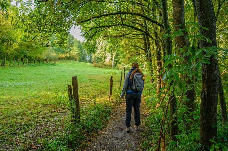 Herbstwandern im Bergischen Land