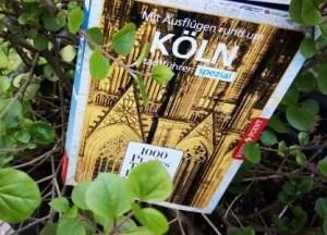 Vista Point - Buch Ausflüge Köln