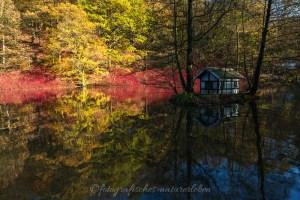 Herbstlaub am See mit Bergischem Fachwerkhaus in Miniatur