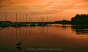 Abendstimmung am Unterbacher See