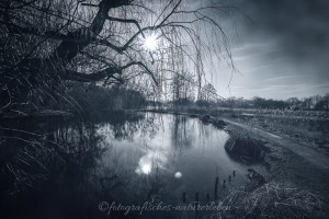 De Wittsee in der Wintersonne