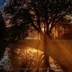 Bärenloch Solingen im Nebel bei aufgehender Sonne