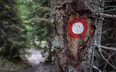 Slovenska planinska pot
