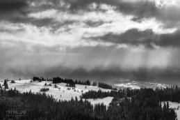 Fotografowanie-zima-snieg-_PTR6081