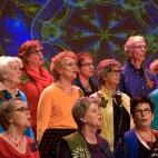 FGZ - 2015-03 Concert Windkracht Vier - 034 - Bertus van Gils