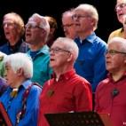 FGZ - 2015-03 Concert Windkracht Vier - 044 - Roy Weijgers