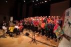 FGZ - 2015-03 Concert Windkracht Vier - 067 - Oscar Buswijller