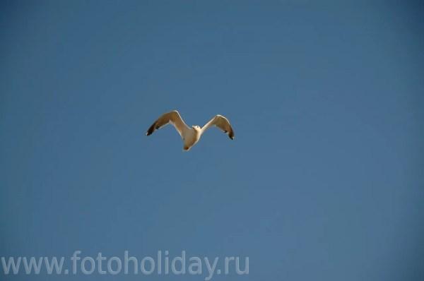 Актау Шевченко фото
