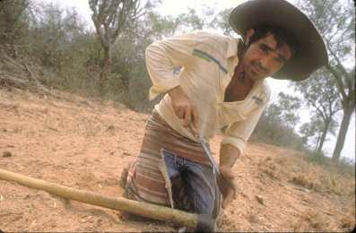 Paraguay, el Chaco, Trabajador temporal.