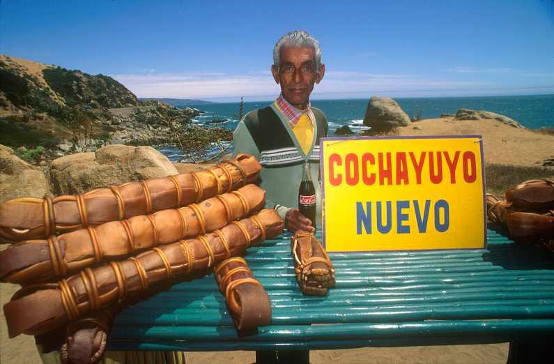 Chile, Valparaiso Venta de algas, retrato