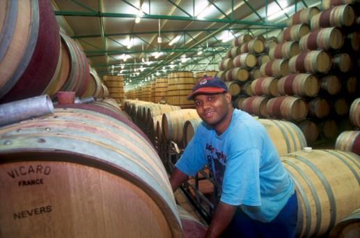 Sudáfrica, El Cabo, Stellenbosch, zona vitivinícola, vinos de Sudáfrica, Bodega Neethlingshof, retrato