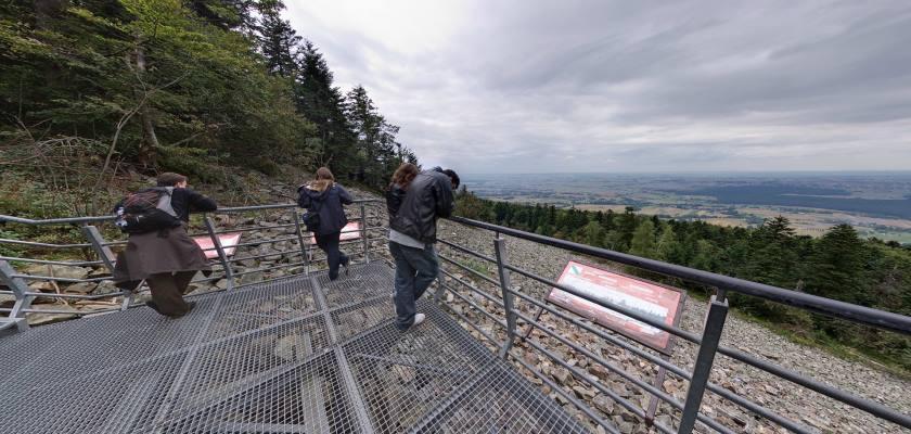 Łysa Góra - widok z platformy widokowej na gołoborzu