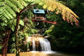 Robinson Falls