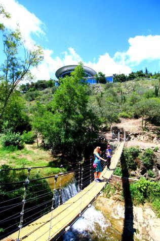 Narodowy Ogród Botaniczny