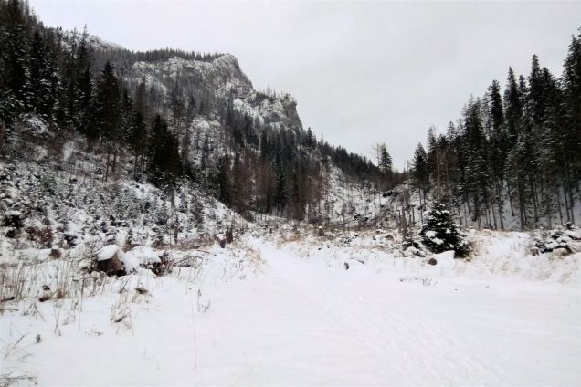 szlak na Przysłop Miętusi