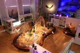 Muzeum Historii Naturalnej