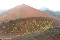 Krater Silvestri