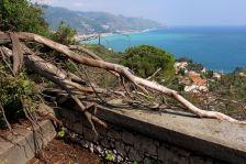 Stairs to Taormina