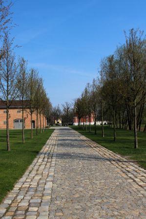 Pałac w Szałszy od zachodu