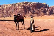 wizyta wielbłądzicy