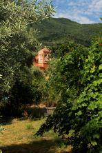 Nikiana - zachodnia część miasta