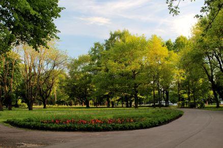 Park Viktorii