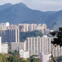 HONGKONG KONTYNENTALNY