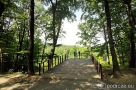 Arboretum Bramy Morawskiej