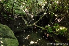 Łaźnie Afrodyty i Ogród Botaniczny