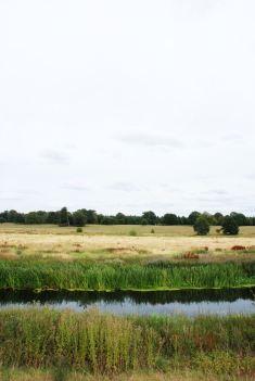 Attingham Park, Shropshire II