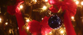 Imagen del blog Navidad Digital