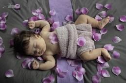 petali viola