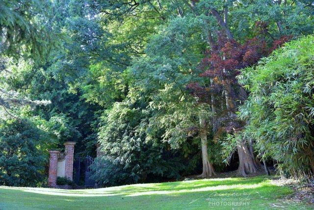 Villa Malfatti, il parco. In mezzo al verde, nel cuore del Canavese