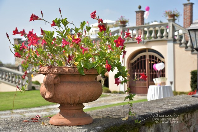 Bairo Canavese: Villa Merlin