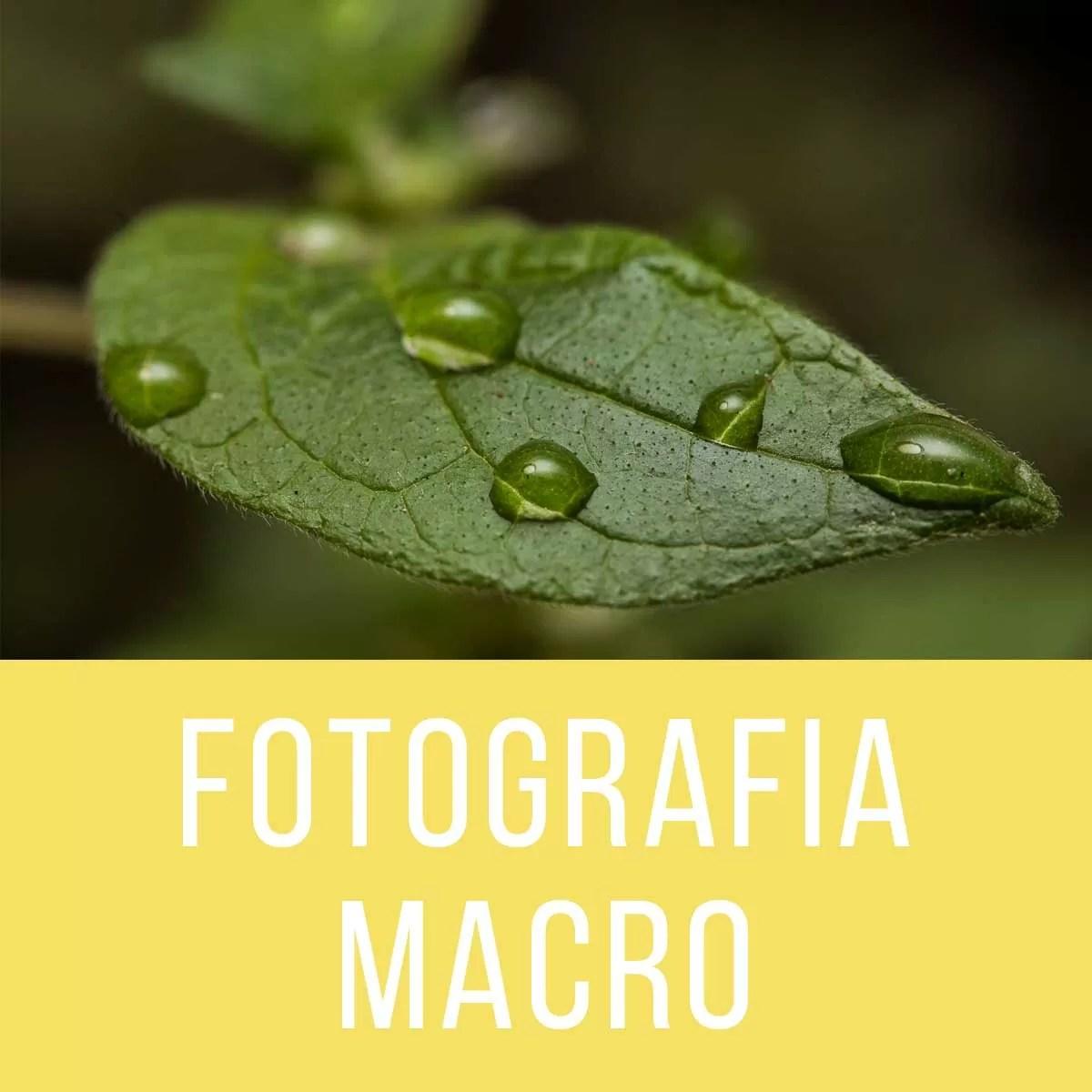 La fotografia macro
