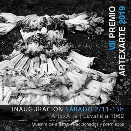 Premio Arte x Arte 2019 Los Ganadores