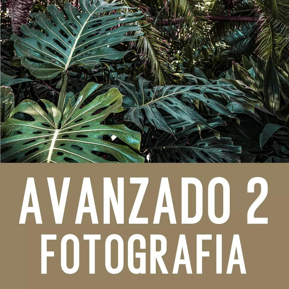 Curso Avanzado 2 de Fotografía Digital