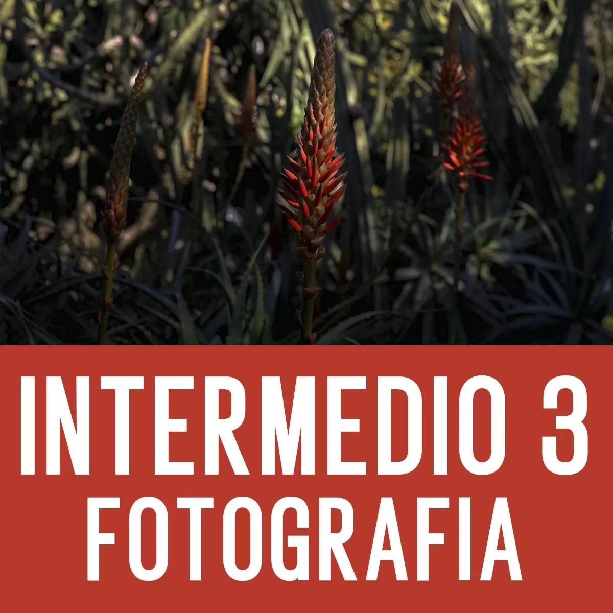 Curso Intermedio 3 de Fotografía Digital