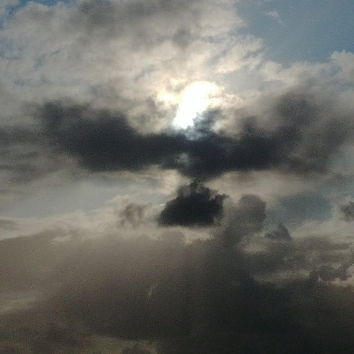 Do you discover animals in the clouds?.I do. Picture of a big cloud eagle in the dark, cloudy sky.
