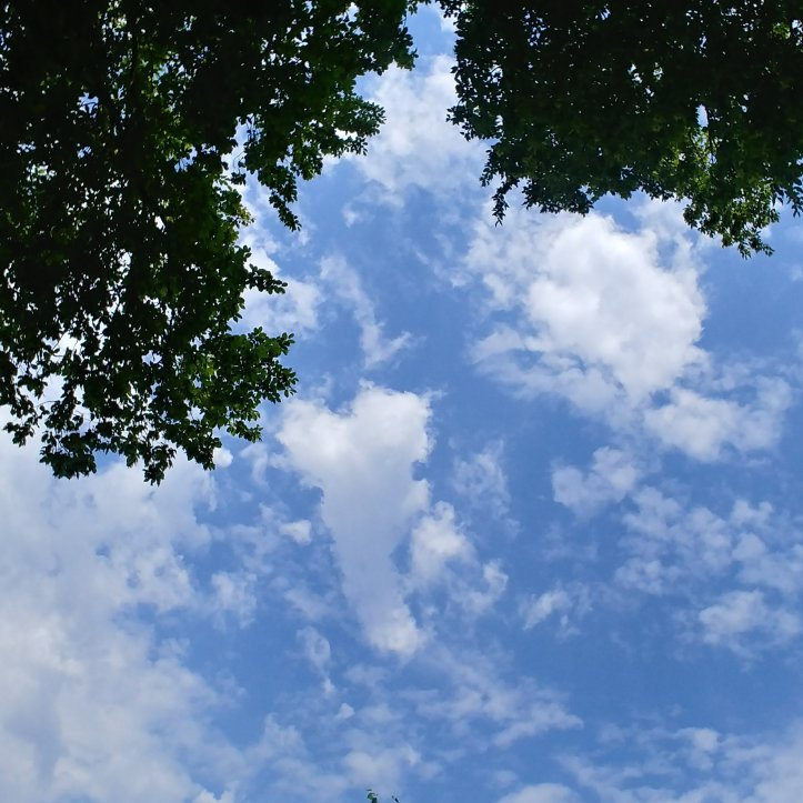 A little heart in the sky, happy 1.August, nature photo by fotosbykarin