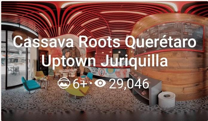 Cassava roots Queretaro