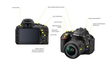 фотоуроки для начинающих бесплатно. как правильно фотографировать?