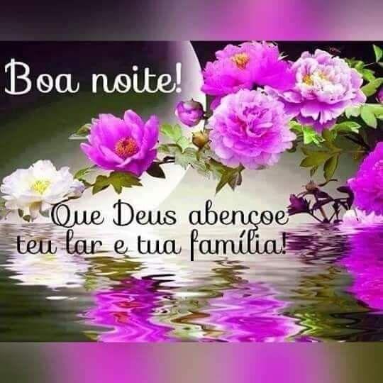 Uma linda noite de carinho venho te desejar, que Deus abençoe o seu lá e a sua família